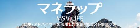 msvlifeb