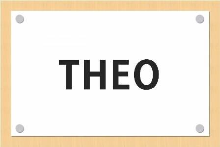 wealthnavi-theo2