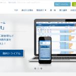 【IPO】チームスピリット(4397)の初値予想と株価分析!